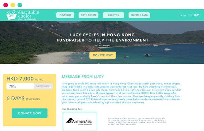 Fundraise page browser